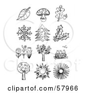 Digital Collage Of Black And White Leaves Mushrooms Snowflakes Plants And Flowers