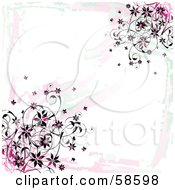 Grungy Pink Flower Vine Background On White