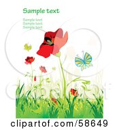 Royalty Free RF Clipart Illustration Of A Poppy Field And Butterfly Background With Sample Text Version 1