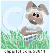 Bunny Rabbit In Grass Holding A Blue And Gray Easter Egg