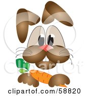 Brown Rabbit Resting His Paw On A Carrot