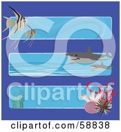 Digital Collage Of Three Ocean Banners With Fish Sharks And Corals