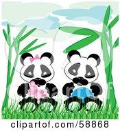Baby Boy And Girl Pandas Sitting In Bamboo