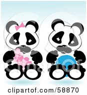 Baby Boy And Girl Pandas Sitting Side By Side