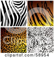 Royalty Free RF Clipart Illustration Of A Digital Collage Of Four Zebra Tiger Leopard And Cheetah Print Backgrounds by michaeltravers