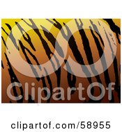 Royalty Free RF Clipart Illustration Of A Patterned Tiger Skin Print Background