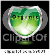 Royalty Free RF Clipart Illustration Of A Green Organic Shield With Chrome Trim by michaeltravers