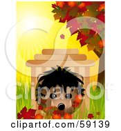 Cute Hedgehog In A Wooden House In Grass With Autumn Leaves