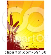Shining Orange Background With Birds Bordered By Red Grunge And Wheat