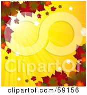 Royalty Free RF Clipart Illustration Of A Background Of Bright Sun Shining Behind Fall Leaves by elaineitalia