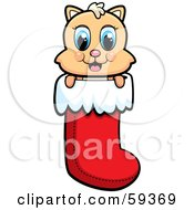 Royalty Free RF Clipart Illustration Of A Cute Christmas Kitty Peeking Out Of A Stocking