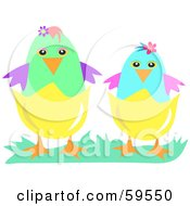 Two Colorful Easter Chickens Wearing Half Of Their Egg Shells