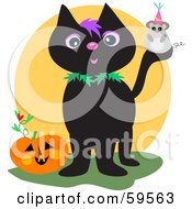 Mouse On A Black Cats Tail Near A Halloween Pumpkin