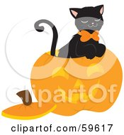 Royalty Free RF Clipart Illustration Of A Black Cat Sitting Inside A Carved Halloween Pumpkin