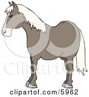 Profile Of A Horses Side Clipart Picture