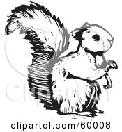 Royalty Free RF Clipart Illustration Of A Black And White Squirrel Holding One Paw Up by xunantunich #COLLC60008-0119