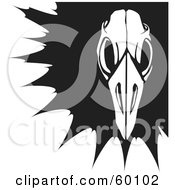 Royalty Free RF Clipart Illustration Of A Black And White Bird Skull Over A Black Splatter
