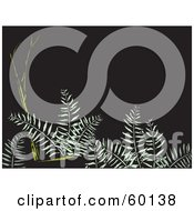 Royalty Free RF Clipart Illustration Of Green Ferns And Branches Over A Dark Background by xunantunich