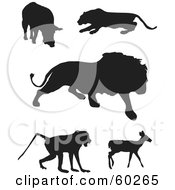 Digital Collage Of Animal Silhouettes Boar Panther Lion Baboon And Deer