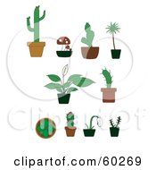 Digital Collage Of Cactus And Other Potted Plants