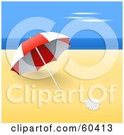 Shell On The Beach Near A Red Umbrella