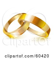 Two Shiny 3d Gold Wedding Rings Entwined