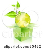 Royalty Free RF Clipart Illustration Of A Plant Growing On A Green Globe Over An Open Box by Oligo
