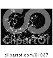 Royalty Free RF Clipart Illustration Of An Ornate White Vine Scroll Background On Black by pauloribau