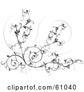 Royalty Free RF Clipart Illustration Of An Ornate Black Vine Scroll Background On White by pauloribau