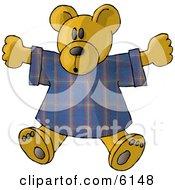 Teddy Bear Stuffed Animal In A T Shirt