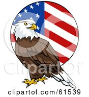 Royalty Free RF Clipart Illustration Of A Bald Eagle In Front Of A Rounded American Flag