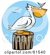 Royalty Free RF Clipart Illustration Of A White Pelican Swallowing Fish And Resting On A Stump