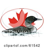 Royalty Free RF Clipart Illustration Of A Swimming Loon In Front Of An Oval Canadian Flag