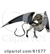 Black Winged Jersey Devil