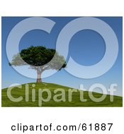 Royalty Free RF Clipart Illustration Of A Mature 3d Cherry Tree On Top Of A Green Hill Under A Blue Sky