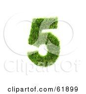 Green 3d Grassy Number 5
