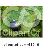 3d Globe Nestled In The Nook Of A Green Photographed Plant Leaf