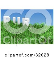 Royalty Free RF Clipart Illustration Of A Green 3d Grassy Hill With Pur Text Under A Blue Sky by chrisroll