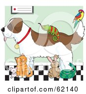 Royalty Free RF Clipart Illustration Of A Saint Bernard Dog Chameleon Parrot Mouse Cat Rabbit And Snake In A Veterinary Clinic by Maria Bell