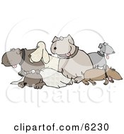 Different Breeds Of Dogs In A Group Clipart Picture