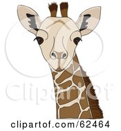 Royalty Free RF Clipart Illustration Of A Curious Staring Giraffe Head by Pams Clipart