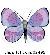 Royalty Free RF Clipart Illustration Of A Beautiful Purple Butterfly