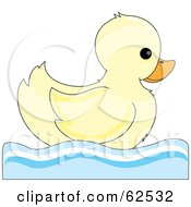 Cute Swimming Pale Yellow Ducky In Profile