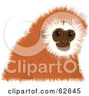 Royalty Free RF Clipart Illustration Of A Cute Orange Tamarin Monkey