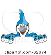 Royalty Free RF Clipart Illustration Of A Blue Jay Character School Mascot Holding Up A Sign