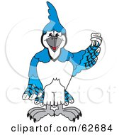 Royalty Free RF Clipart Illustration Of A Blue Jay Character School Mascot Holding A Tooth by Toons4Biz