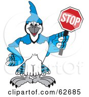 Royalty Free RF Clipart Illustration Of A Blue Jay Character School Mascot Holding A Stop Sign by Toons4Biz