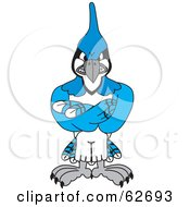 Royalty Free RF Clipart Illustration Of A Blue Jay Character School Mascot With Crossed Arms by Toons4Biz