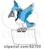 Royalty Free RF Clipart Illustration Of A Blue Jay Character School Mascot Flying With A Blank Sign by Toons4Biz