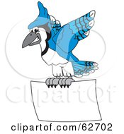 Royalty Free RF Clipart Illustration Of A Blue Jay Character School Mascot Flying A Blank Sign by Toons4Biz